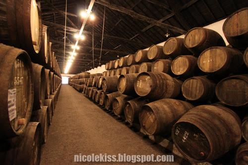 taylors wine cellar