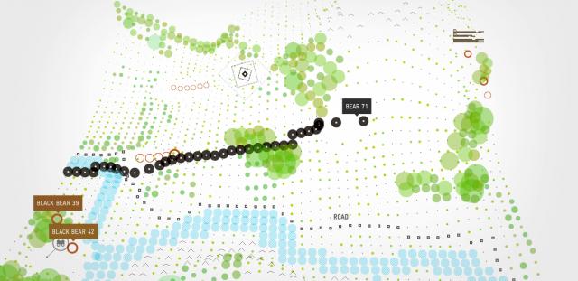 Bear 71 – Map Interface