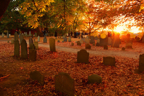 Image result for cemeteries in fall