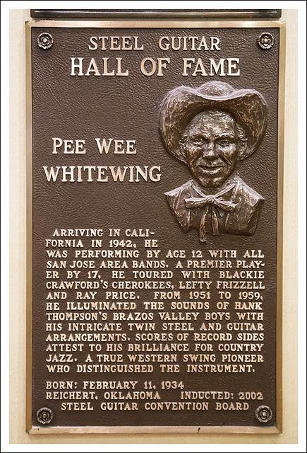 Pee Wee Whitewing