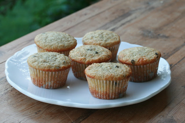 Citrus Currant Sunshine Muffins - Tuesdays with Dorie