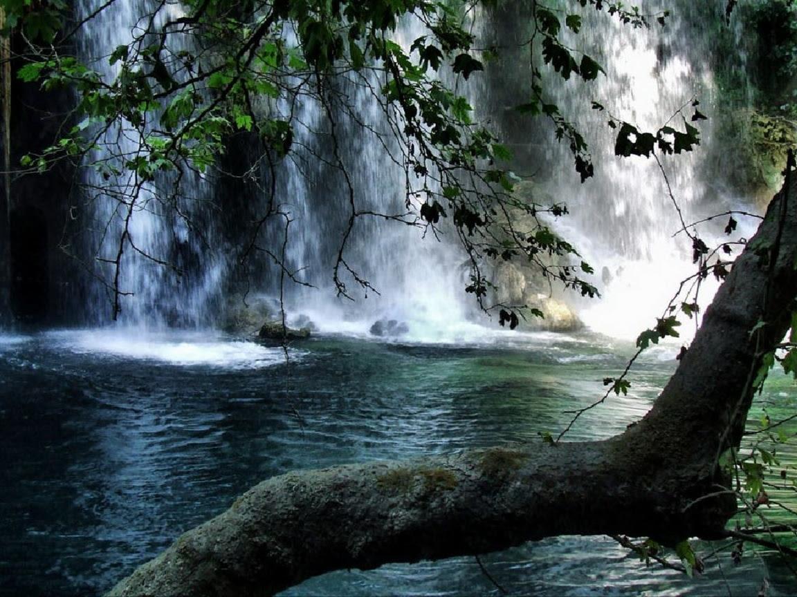 paisaje-con-cascadas