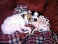 dottie_and_jack2