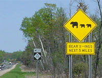 bear crossing sign