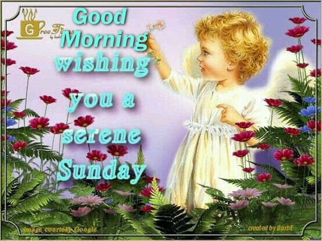 Good Morning God Bless You Images Top Colection For Greeting And