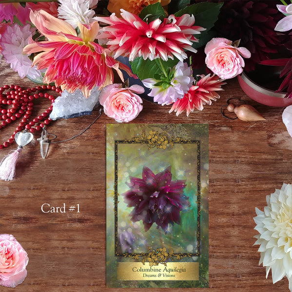 Alchemy Flower Oracle Messages From Flowers Ingrid Koivukangas
