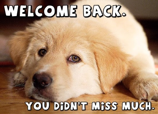 Welcome Back Quotes Sayings Welcome Back Picture Quotes