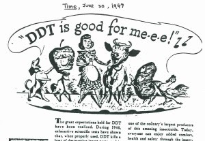 DDT, Time Magazine, 1947