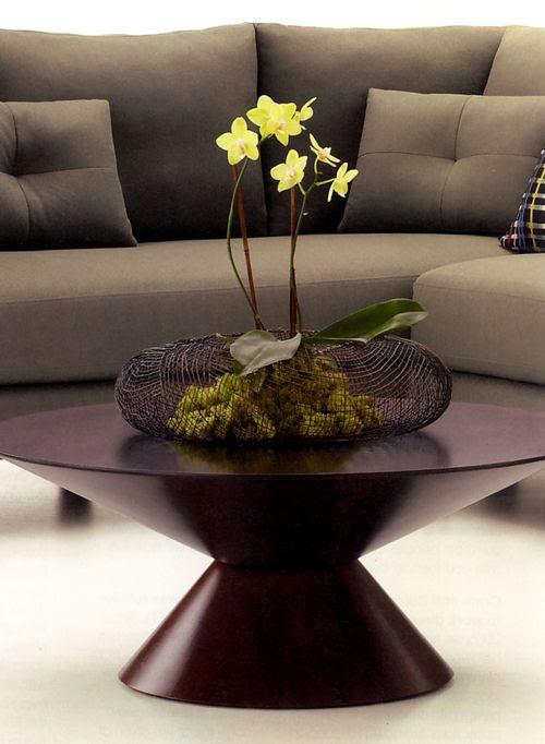 LotusHaus: Interior Design