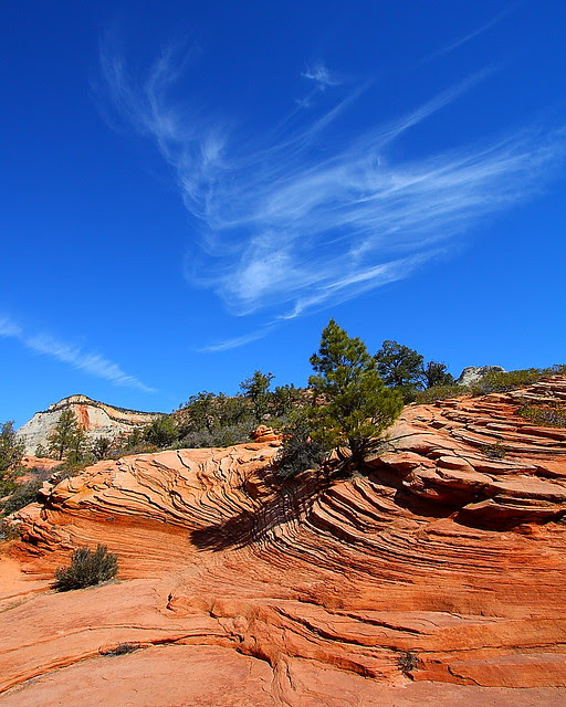 IMG_5985 Sandstone Swirls and Clouds, Zion National Park
