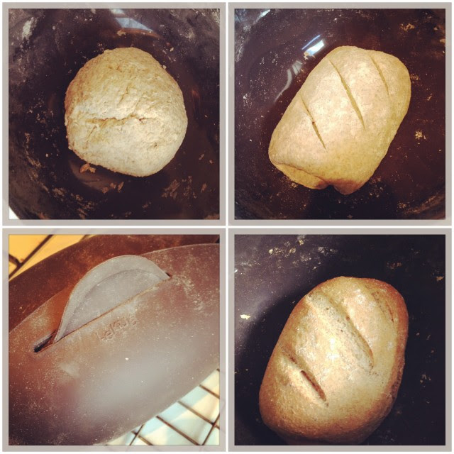 Recipe: Mixed Grain Loaf With Rye (LéKué Bread maker ...