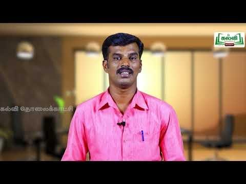 5th Social Science Bridge Course குழந்தைகளின் உரிமைகள்,கடமைகள் Kalvi TV