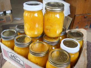 Canned Pumpkins