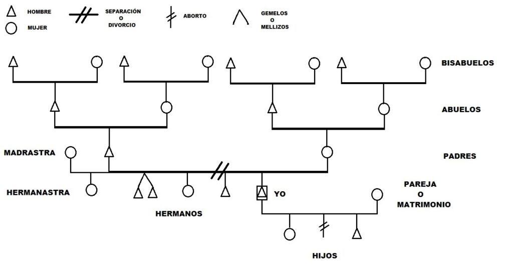 Bioneuroemoción Como Hacer árbol Genealógico En Biodescodificación