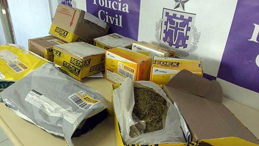 Droga foi encontrada durante ação em distribuidora dos Correios | Foto: Divulgação/ Polícia Civil