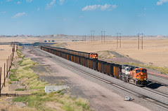 BNSF 6336 Powder River