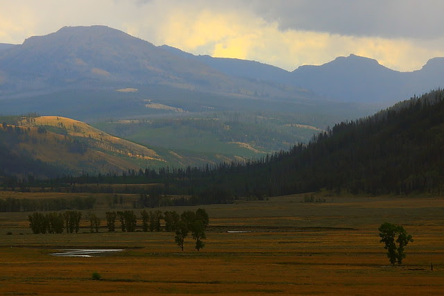 IMG_4929 Lamar Valley