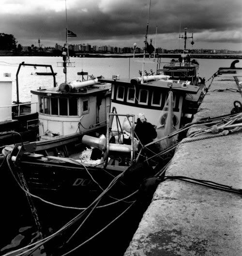 Small fishing vessels moored in a stormy day