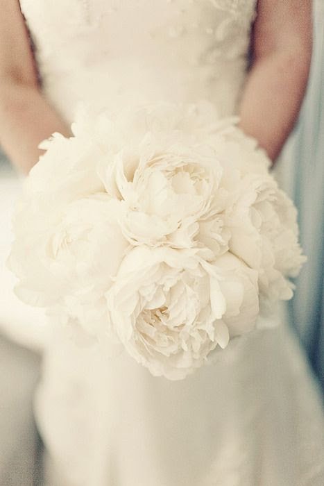 white on white LOVE!!