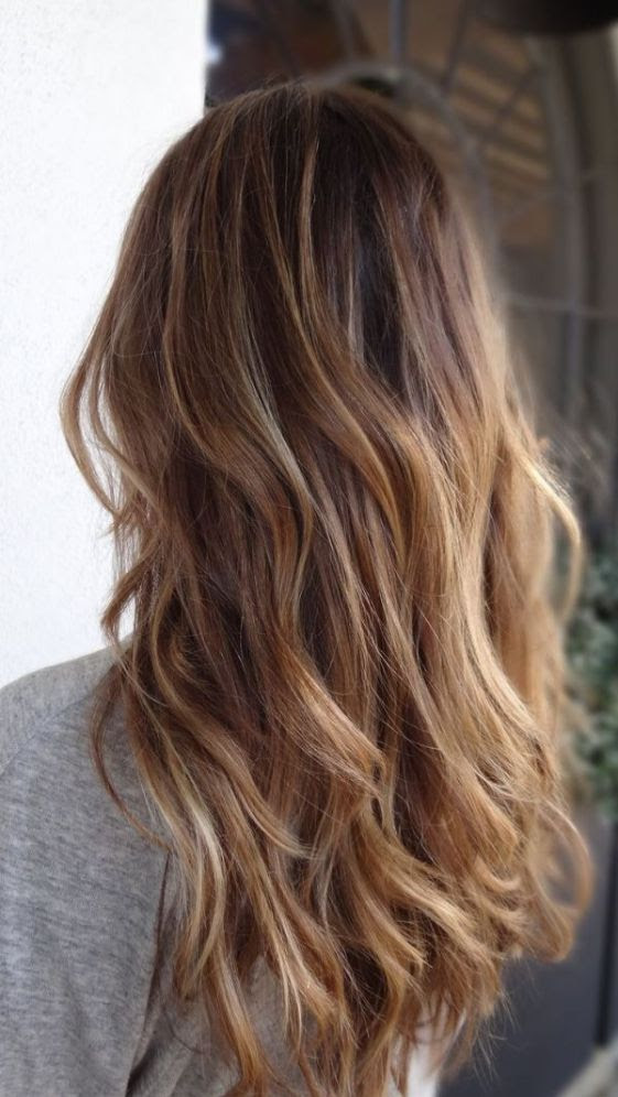 Ombre Braun Blond Brown Ombre Hair Solutions For Any Taste Blonde