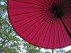 umbrella in Shukkeien