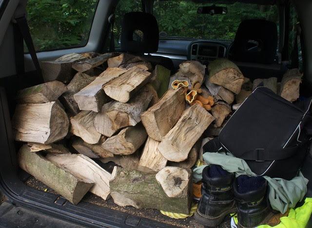 DSC_6957 cut and split logs