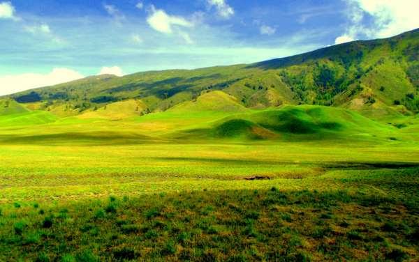 Bukit Teletubies savanah Gunung Bromo