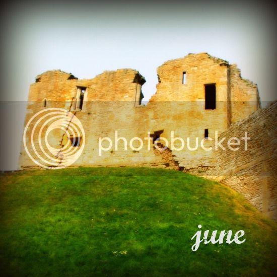 photo jewelled web june2014