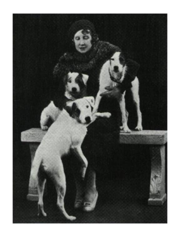 http://dogsmakeeverythingbetter.files.wordpress.com/2013/03/von_arnim_dogs.jpg