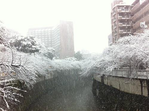 Kanda river covered in snow