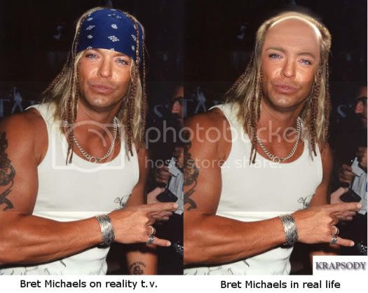 bret michaels reality