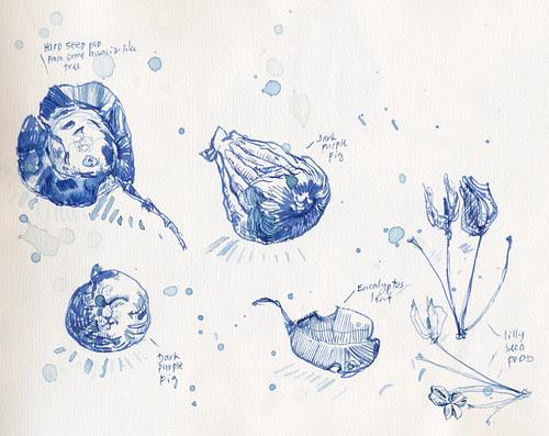 October 2013: Treasures by apple-pine