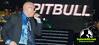 Pitbull alborota público en hotel Jaragua