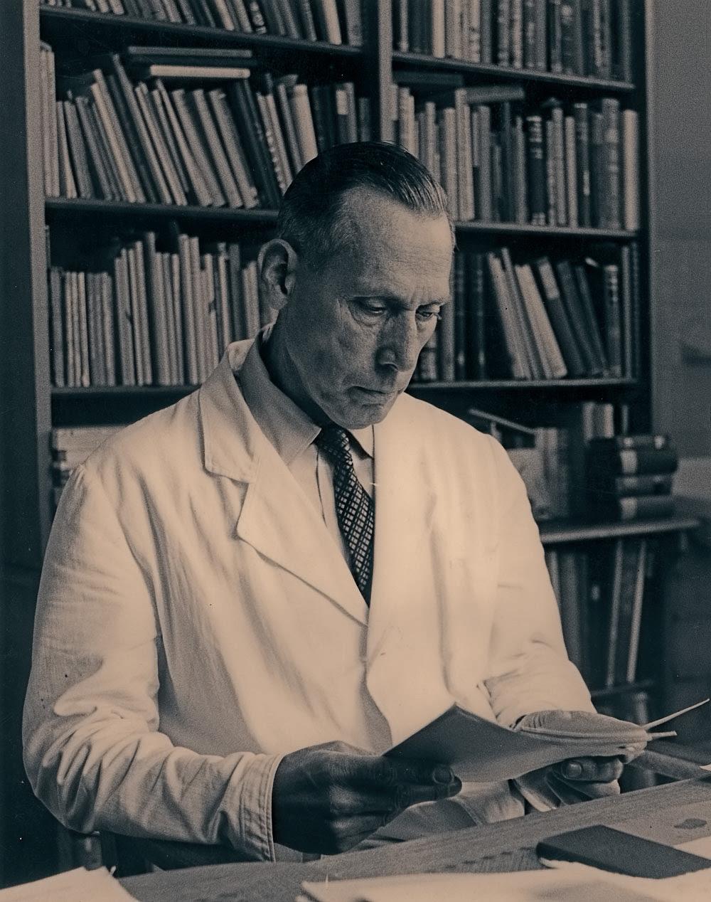 Portmann-Adolf