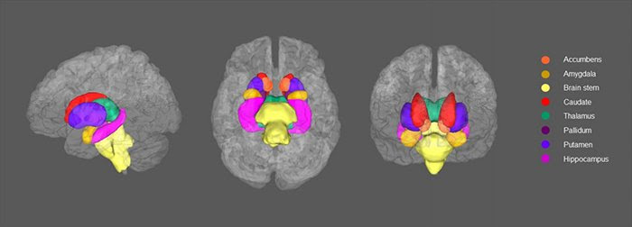 Depression could change the wiring inside your brain, new ...