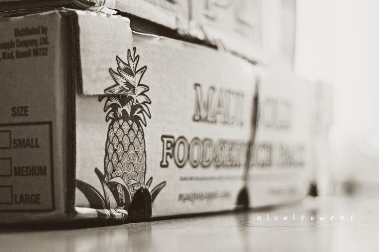 pineapple taking over my hallway.