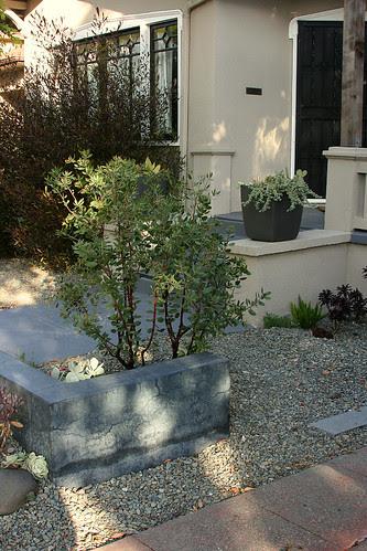concrete, arctostaphylos and gravel