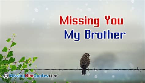 Missing U Brother Quotes