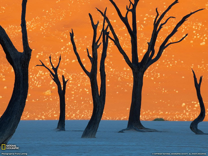 cool-unbelievable-places-Earth-Deadvlei