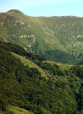 """Vu depuis Saint-Jacques-des-Blats, le Plomb du Cantal et le """"pommeau"""" arrondi de son sommet."""