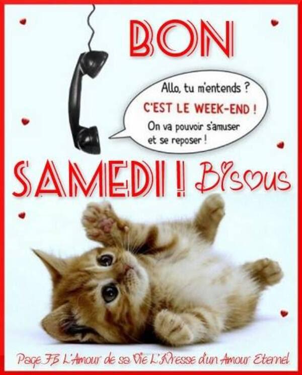 Bonne Journée Et Bon Week End Mabiche1231
