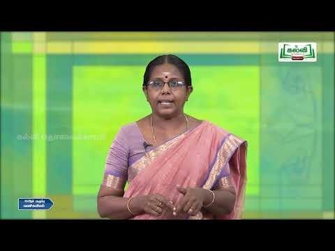 12th Commerce Marketing And Marketing Mix Part 2 Kalvi TV