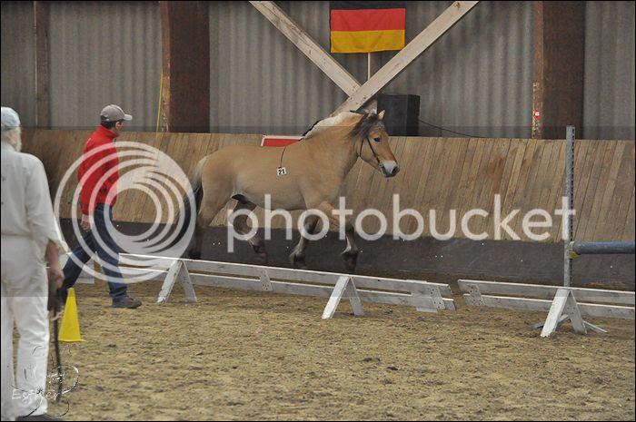 photo 14-03-2015 HK Belgie 68.jpg