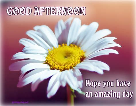 Good Afternoon ? Cards, Pictures. ? Holidays