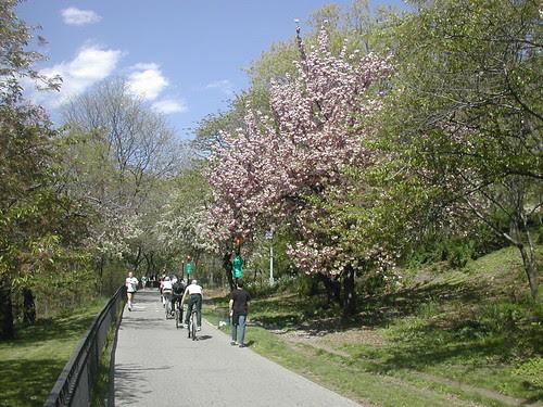 Riverside Park/ Bike Trails
