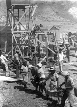 Volontari aiutano nella costruzione del Kibbutz Ein Gev.