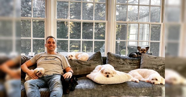'Impractical Jokers' Joe Gatto Writes A Book About His, No Joke, 8 Dogs