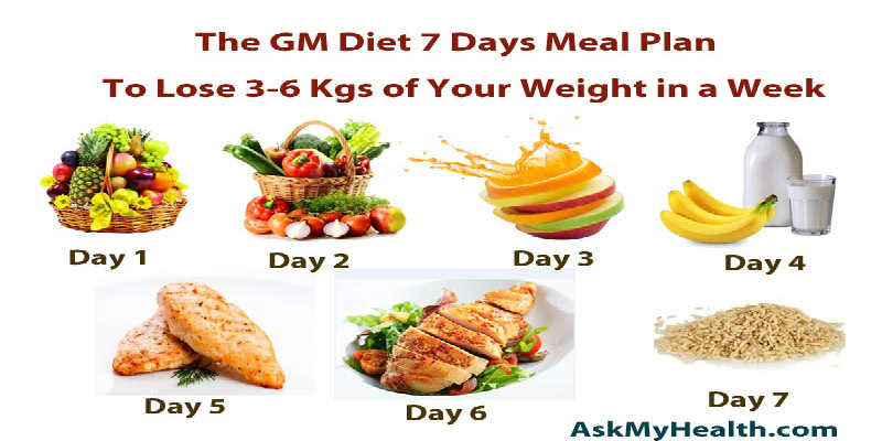 diet meal plan for losing weight fast