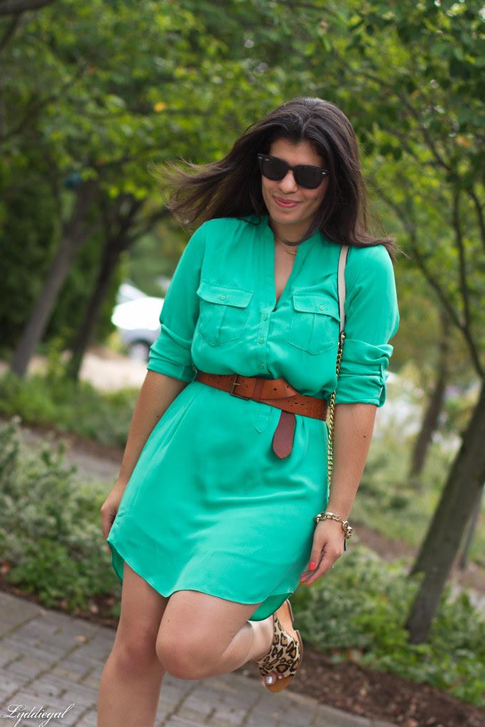 shirt dress and leopard wedges-3.jpg