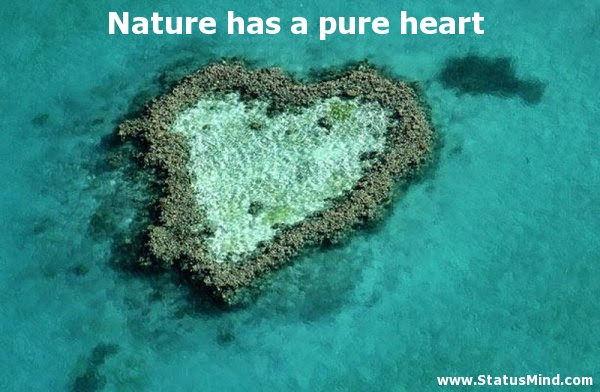 Nature Has A Pure Heart Statusmindcom